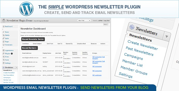 WordPress Newsletter Plugin