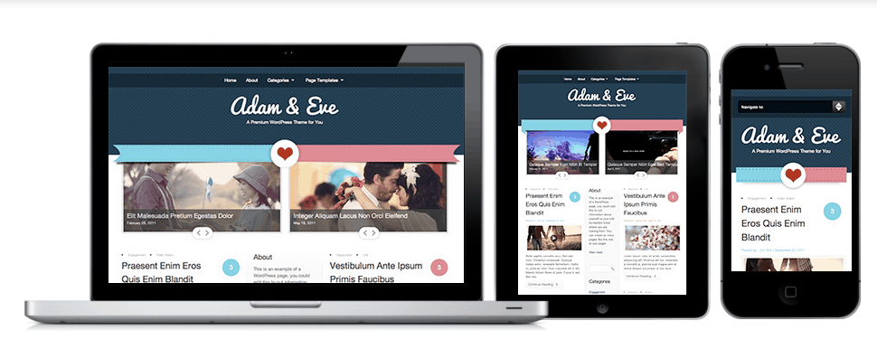 5 premium responsive wordpress themes worth exploring this sweet theme pronofoot35fo Image collections