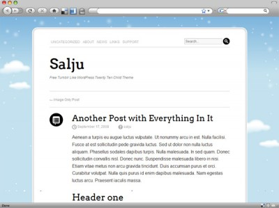 Salju WordPress Theme