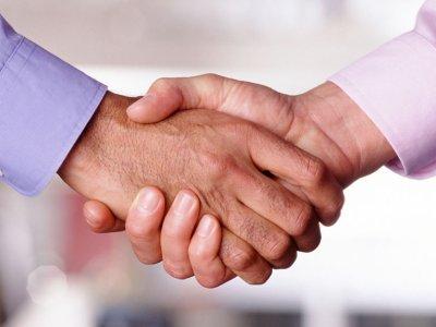 Handshake by buddawiggi